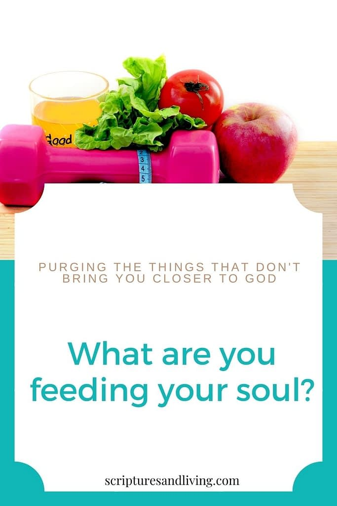 What are you feeding your soul pinterest banner
